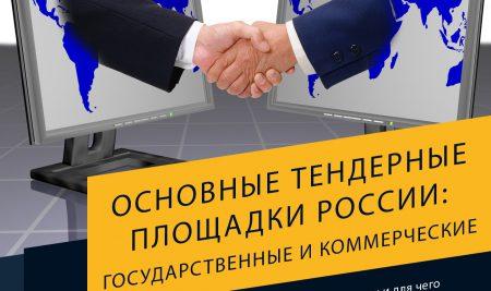 Основные тендерные площадки России: государственные и коммерческие