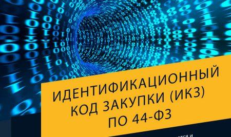 Идентификационный код закупки (ИКЗ) по 44-ФЗ: определение, формирование, расшифровка и поиск закупок по ИКЗ